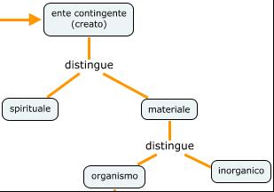 SanTommaso,ontologia,organismo1